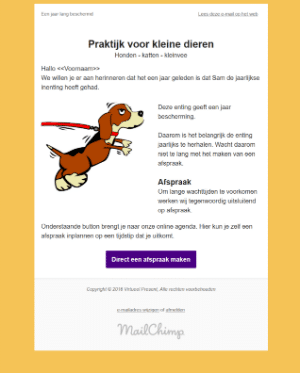 portfolio workshop mailchimp template maken