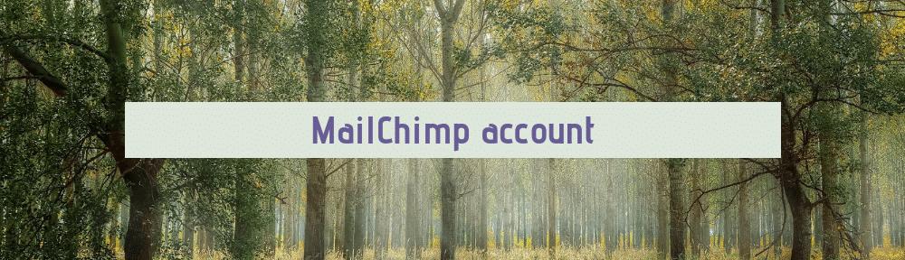 MailChimp handleiding MailChimp account