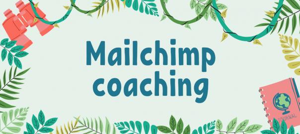 Mailchimp coaching